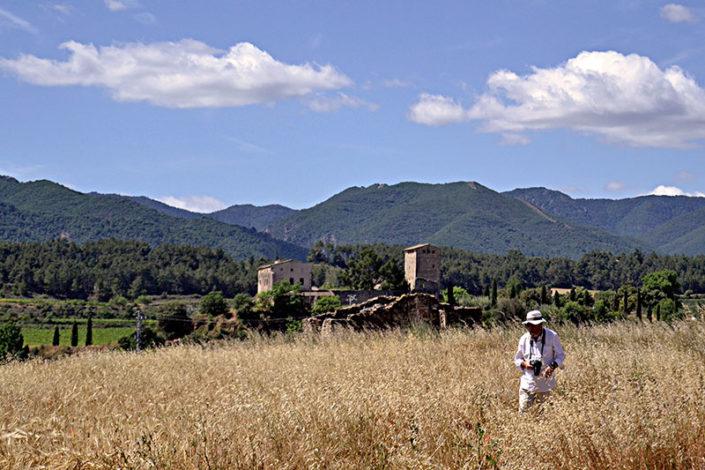 Milmanda, al fons muntanyes de Prades